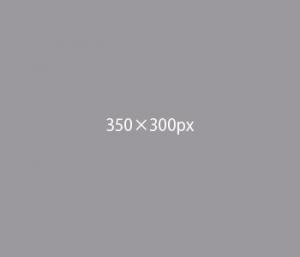 banner_dummy350300